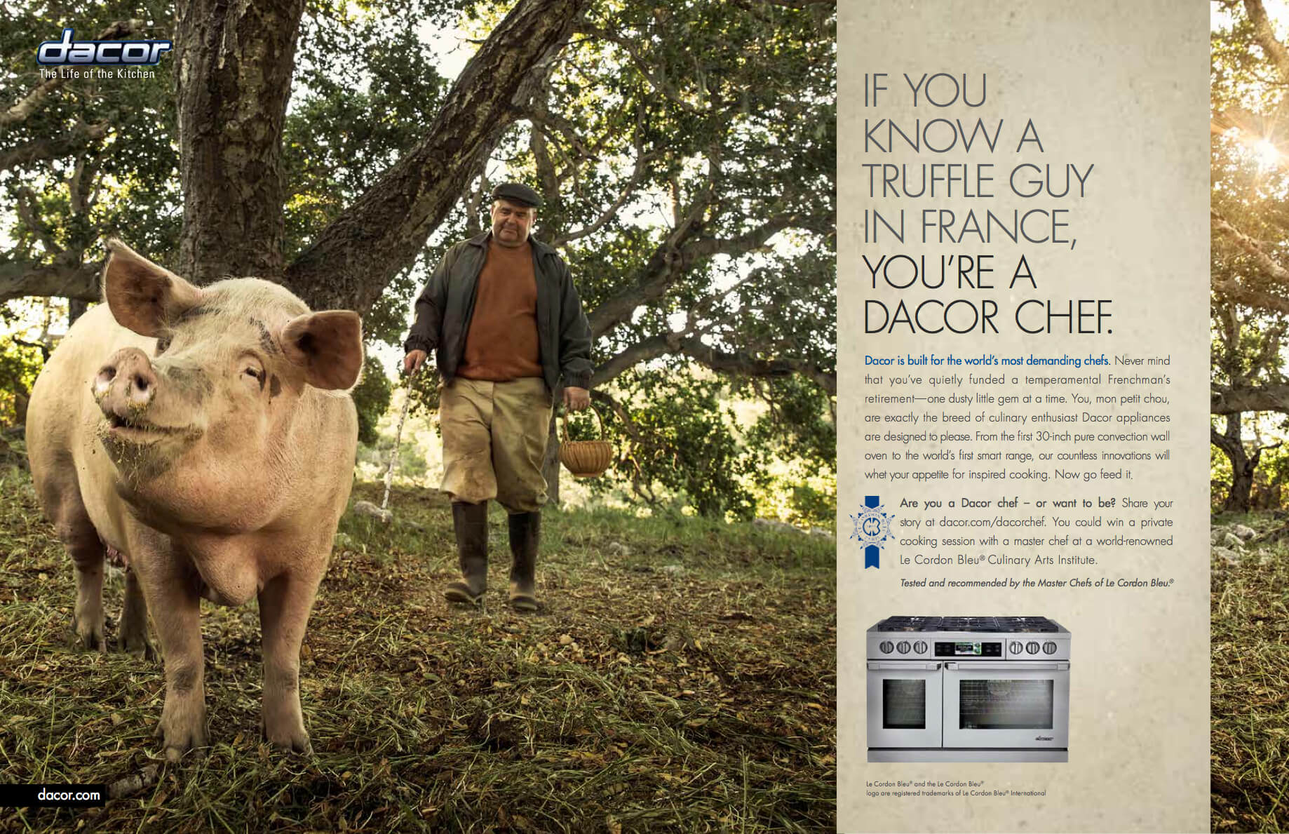 Dacor Print Advertising Campaign